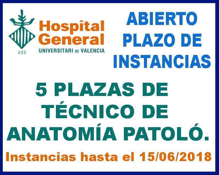 CONVOCATORIA TÉCNICO ANATOMÍA PATOLÓGICA HOSPITAL GENERAL ...